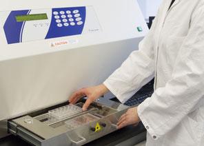 In der UV-Bestrahlungseinheit bestrahlen Fraunhofer-Forscher das Hautmodell mit einer definierten, nicht toxischen UV-Dosis. (Foto:Fraunhofer IGB)