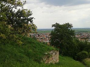 Wachtenburg Wachenheim