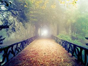 Lebensbereiche aktivieren im Herbst