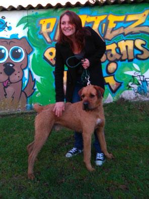 chien adoptés - refuge du Penthièvre - Bréhand - 22 - Bretagne
