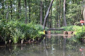 Spreewaldkanal