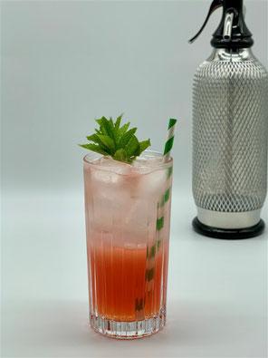 sea breeze cooler, apricot brandy, aprikosen brandy, cocktail mit aprikose, gin cocktail, cocktail mit gin