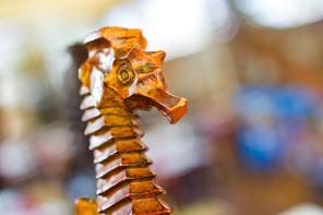 Caballo de mar tallado en madera de un tirador de cerveza del Restaurante El Marino Rotes
