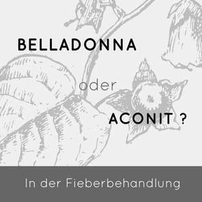 Aconitum oder Belladonna? welches ist das richtige Fiebermittel? Winter Globuli Homöopathie Berlin