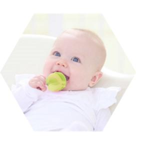 Babys gesund ernähren mit dem Food Feeder von kidsme