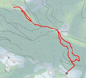 Wanderung von Vorderstoder über das Spitzmäuerl auf den Tamberg