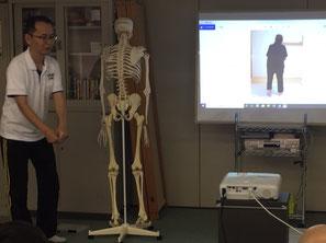 しんそう療方京都研修会は、手足のバランスから身体の歪みを分析し、調整していきます。