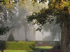 Nebel, Friedhof, Herbst