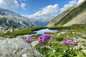 zu urigen Hütten wandern - Urlaub in Finkenberg in den Ferienwohnungen  Brückenhof