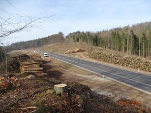 Entwaldung der Unhauser Höhe für Autobahnbau