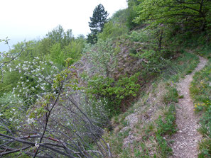 Bergsturz-Wanderpfad