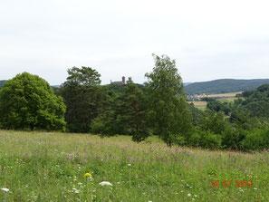 Artenreiche Magerwiese und Ludwigstein