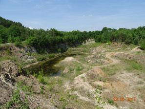 Hochwertiger Lebensraum für seltene Amphibien, Libellen, Vögel, Fische, Sandgrube Braunrod vor der Verfüllung 2017.