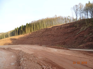 Entwaldung und gigantische Erdarbeiten bei Sontra-Wellingerode