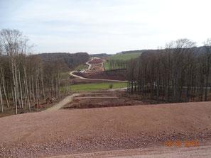 Waldschneise/Streckenverlauf zukünftiges Brückenbauwerk Talquerung Lindenauer Tal