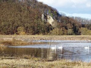 Kletterfelsen oder landschaftsprägendes Naturdenkmal?