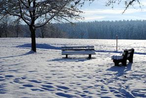 Waldsee beim Hotel Breitenbacher Hof in Waldachtal-Lützenhardt /  Schwarzwald zwischen Freudenstadt und Horb