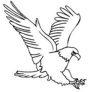 Cierto día las águilas se declararon en guerra contra las liebres
