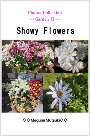 Photos Collection ― Garden 2 ― Showy  Flowers