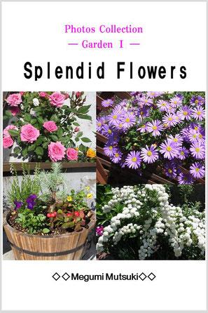 Photos Collection ― Garden ― Splendid Flowers
