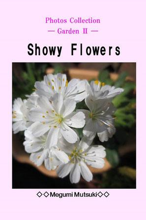 """Photos Collection ― Garden Ⅱ ―  Showy Flowers"" Megumi  Mutsuki"