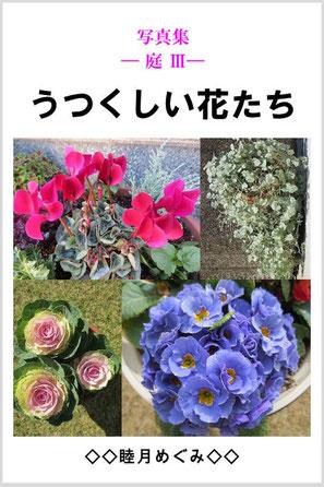 『写真集 ― 庭 Ⅲ ― うつくしい花たち』 睦月めぐみ