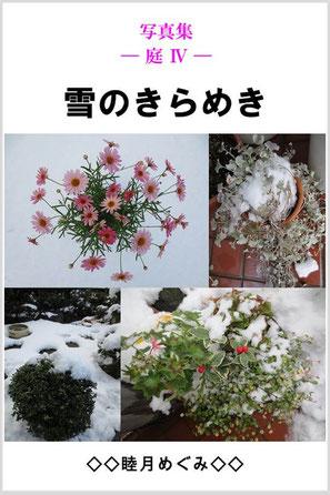 『写真集 ― 庭 Ⅳ ―  雪のきらめき』 睦月めぐみ