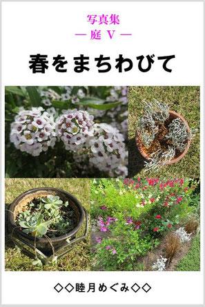 『写真集 ― 庭 Ⅴ ―  春をまちわびて』 睦月めぐみ