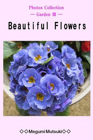 """""""Photos Collection ― Garden Ⅲ ―  Beautiful Flowers"""" Megumi  Mutsuki"""