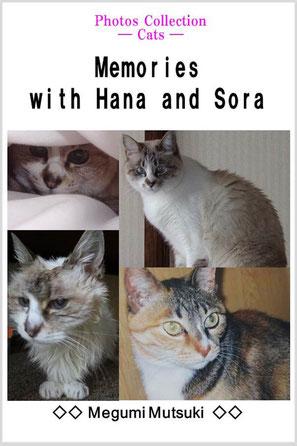 Photos Collection ― Cat ― Memories with Hana and Sora