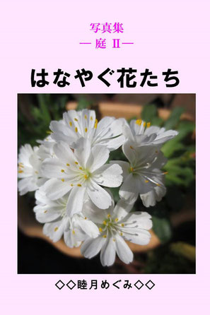写真集 ― 庭 Ⅱ― はなやぐ花たち 睦月めぐみ