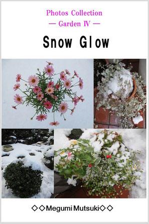 Photos Collection ― Garden 4 ― Snow Glow
