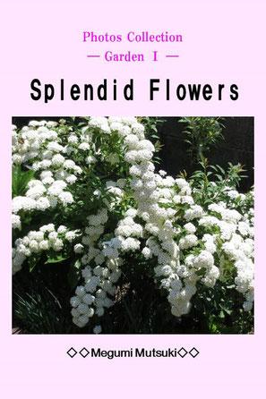 """Photos Collection ― Garden Ⅰ ―  Splendid Flowers"" Megumi  Mutsuki"