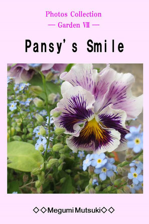 """Photos Collection ― Garden Ⅶ ―  Pansy's Smile"" Megumi  Mutsuki"