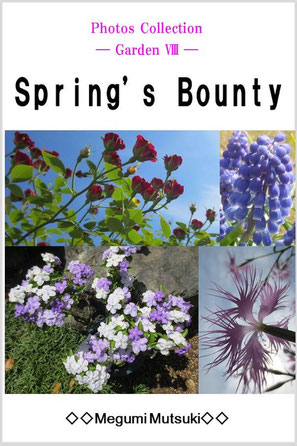 Photos Collection ― Garden 8 ― Spring's Bounty
