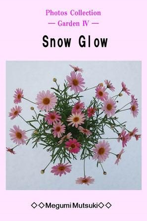 """Photos Collection ― Garden Ⅳ ―  Snow Glow"" Megumi  Mutsuki"