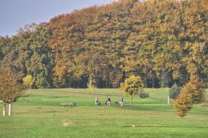 Dr. Reinhard Koss Golfplatz Projekte