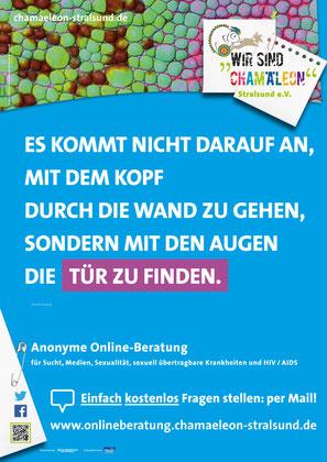 A2 Poster für die lokalen Busse / Stralsund