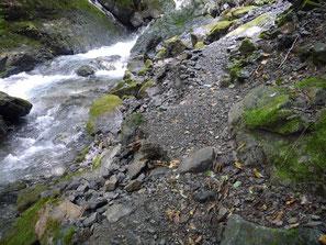 登山道(削れたところ)