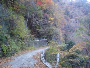 谷沿いはより早く暗くなるため要注意