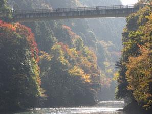 秋 数馬峡