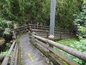 急な階段を降ります。