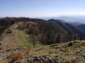 雲取山山頂付近は落葉(標高約2000m)
