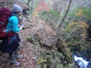 谷側は落ち葉を踏み抜いて滑落する危険性がある