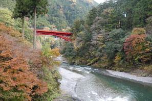 氷川小橋から眺める氷川渓谷①