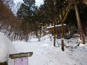 ワサビ田の広場(標高約970m)