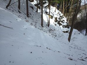 登山道の様子(標高約950m)
