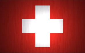 Infos zur Treibholz-Bestellung aus der Schweiz