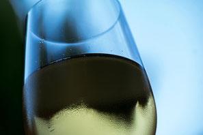 Vins Blancs de Bordeaux