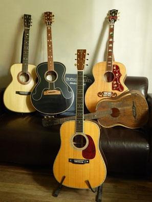 Grinning Elk - Sacha Stefanovic - Luthier Guitares Dinard